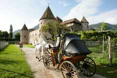 Italian wedding carriage - Alpine castle in the Dolomites