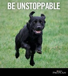 Be unstoppable!!!!!