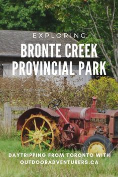 Bronte Creek Provincial Park is one of the closest, natural provincial parks to Toronto. And you can camp at it! Read up on the many trails and family activities you can do here. #parks #Toronto #Ontario #BronteCreek #provincialparks #nature #outdoors #hiking #hikingtrails #camping