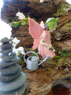 Busy fairy gardening