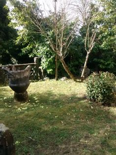 La #primavera è arrivata anche a @CasaPogliaghi: primule in #giardino tra statue e curiosità! #varese #sacromonte
