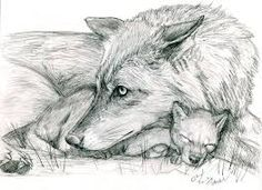Image result for wolf pup drawing