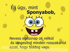 spongyabob.jpg (960×720)