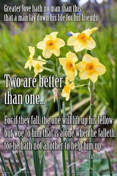Greater love hath no man than this that a man lay down his life for his friends.-- John 15:13 KJVTwo are better than one because they have a good reward for their toil. 10 For if they fall one will lift up his fellow. But woe to him who is alone when he falls and has not another to lift him up! 11 Again if two lie together they keep warm but how can one keep warm alone? 12 And though a man might prevail against one who is alone two will withstand him-a threefold cord is not quickly broken…