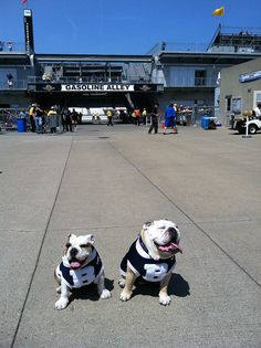 From @ButlerBlue2: Me, @ButlerBlue3 & the one & only Gasoline Alley at @IMS.  -- via Flickr