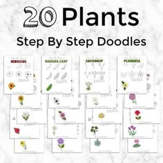 Flower Doodle Tutorials, Floral Step By Step Doodles, Learn How To Doodle Flowers and Plants, How to Draw Tutorials, Digital Pages Doodles Bujo Doodles, Love Doodles, Simple Doodles, Doodle Sketch, Doodle Drawings, Easy Drawings, Bullet Journal Art, Art Journal Pages, Doodles Zentangles