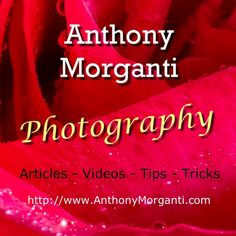 I am a photographer, trainer and retoucher living in Buffalo, New York USA. Through my website http://AnthonyMorganti.com and my YouTube channel, I hope to h...