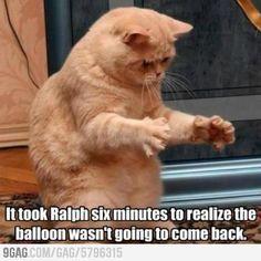 Poor Ralph