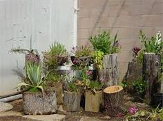 Resultado de imagem para Como usar tocos de madeira para decorar jardim