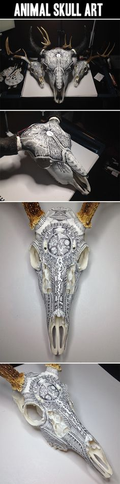 Funny pictures about Animal Skull Art. Oh, and cool pics about Animal Skull Art. Also, Animal Skull Art. Deer Skulls, Cow Skull, Animal Skulls, Skull Art, Carved Skulls, Painted Skulls, Totenkopf Tattoos, Skull Painting, Tatoo Art