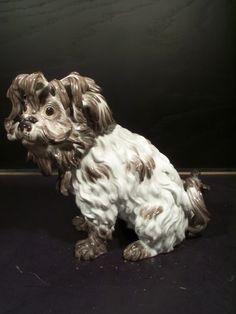 Adorable Antique Meissen Porcelain Figure of a Bolognese Terrier