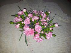 Nydelige rosa nelliker