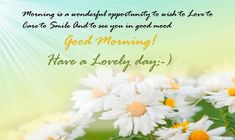 673 Best Good Morning Wishes Images Good Morning Good Morning