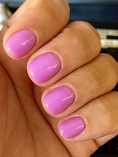 Daisy shellac - lilac season