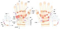 手の反射区 リフレクソロジーにおける手の反射区
