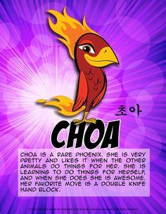 ATA Tigers - Choa's Bio