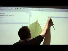 Créer des séquences pédagogique avec le logiciel libre et gratuit open-Sankoré - YouTube