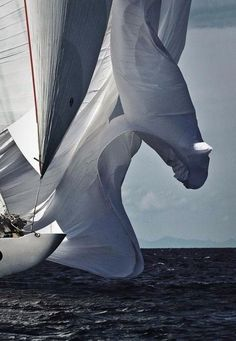 Spinnaker blowing in the wind - via www.murraymitchell.com