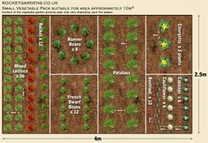 Small Vegetable Garden Layout | ... layout for a small vegetable garden, or a plot in a community garden