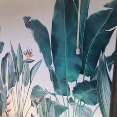 Watercolor Tropical Rainforest Banana Leaves Wallpaper | Etsy Leaves Wallpaper, Plant Wallpaper, Custom Wallpaper, Flower Wallpaper, Wall Wallpaper, Tropical Leaves, Tropical Plants, White Flowers, Colorful Flowers