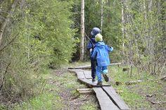 http://www.pienilintu.blogspot.fi/2015/05/pitkospuilla-ja-kurkia.html