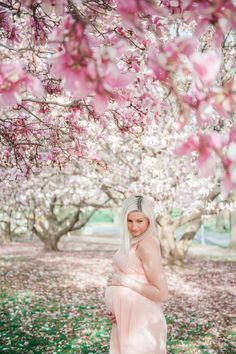 Spring maternity session in cherry blossoms