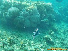 Keindahan Alam Wisata Pulau Putri Resort