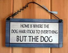 Dog Owners Will Know <-- Our home!