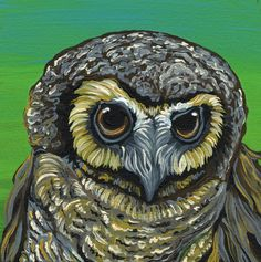 Owl Bird WildlifeArt Original Canvas Magnet Painting -Carla Smale-Bobbysbears #Miniature