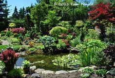 Golden brocade garden of Marion Jarvie: Toronto Garden Bloggers Fling | Digging
