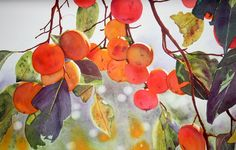 Sarah Bent | WATERCOLOR | Persimmon Tree