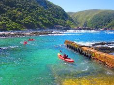 Get on your Kayak at the harbour inside Tsitsikamma National Park ...