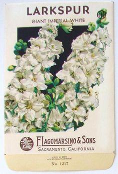 Lagomarsino, Larkspur 1217, Vintage Seed Packet