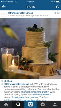 Styling of cake on wooden stump with candles and subtle native floral