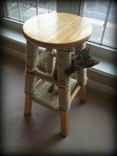 Repurposed stool cat scratching pole