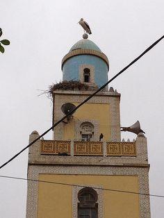 mosque, mohammadia, algeria