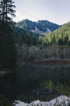 millivedder:  Reflecting  Prints