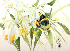 Bumblebee and White Flowers 16 X 12 in original watercolor painting by ORIGINALONLY on Etsy