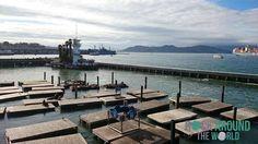 Pier 39 – Fisherman's Wharf in San Francisco