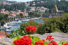 Croatia, Cavtat. View from cafe Bellevue.