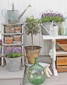 Love the Stepladder with pots