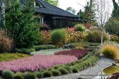 OGRODOWA AURA - o ogrodach na zdjęciach: października 2014