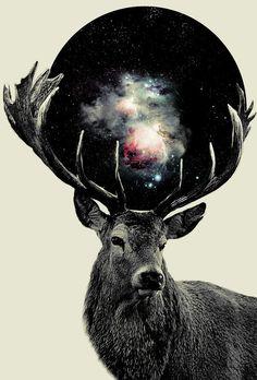 [Galaxy] Deer