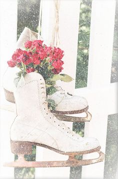 Ice Skates as Christmas Decor.