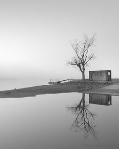 Black and White photography / nature minimal by NicholasBellPhoto