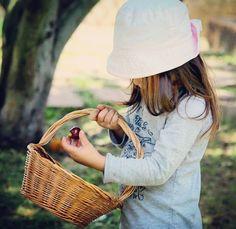 Em nosso pomar colhendo cerejas do mato. . . #childhoodunplugged #childrenofinstagram #candidchildhood #littleandbrave #photo #pixel_kids #cameramama #wildandfreechildren #moments #letthekids #our_everyday_moments #clickinmoms  #simple #rosanecastilhosphotography #photography #photography #fotografia #amor #family #família #jj_its_kids #childofig #momswithcameras #simplychildren #documentyourdays #celebrate_childhood #my_magical_moments #total_kids…