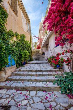 Syros Island, Hermoupolis, Aegean_ Greece Syros Greece, Greek Flowers, Greece Pictures, Misty Day, Greece Photography, Go Greek, Greek Isles, Paradise On Earth, Greece Islands