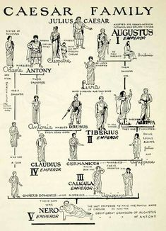 Julius Caesar laid the foundations for the great Roman empire History of Roman military medicine Roman History, European History, World History, British History, American History, Ancient Rome, Ancient Greece, Ancient History, History Medieval