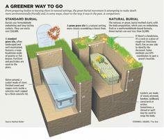 This is a great visual comparison showing the difference between standard burial and green burial.