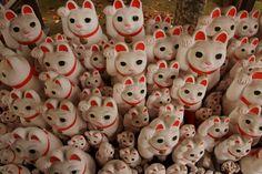 hundreds of maneki neko!
